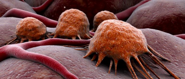 эгоизм раковой клетки